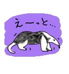 びびり動物(個別スタンプ:17)