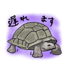 びびり動物(個別スタンプ:24)