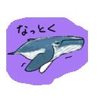 びびり動物(個別スタンプ:31)