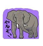びびり動物(個別スタンプ:39)