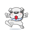 English Bulldog Dog Days(個別スタンプ:40)