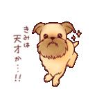いぬだらけ。小型犬-その2-