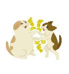 シフォンとマロン(個別スタンプ:05)