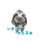 Re:Start 元保護犬スタンプ(個別スタンプ:7)