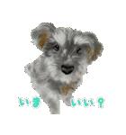 Re:Start 元保護犬スタンプ(個別スタンプ:17)