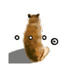 Re:Start 元保護犬スタンプ(個別スタンプ:31)