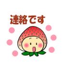 こまめっちょ No.6(いちごスーツで敬語)(個別スタンプ:04)
