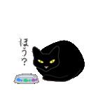 黒猫まみれ★スタンプ(個別スタンプ:17)