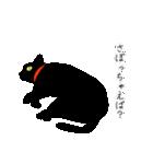 黒猫まみれ★スタンプ(個別スタンプ:22)