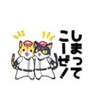 野球にゃんこ(個別スタンプ:10)