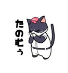 野球にゃんこ(個別スタンプ:36)