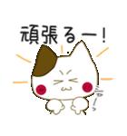 小生意気な白うさとぶちネコ2(個別スタンプ:24)