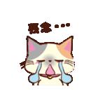 Couple Cat(夫婦ねこ)パート3(個別スタンプ:24)
