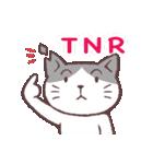 猫だすけ(個別スタンプ:01)