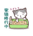 猫だすけ(個別スタンプ:21)