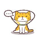 猫だすけ(個別スタンプ:39)