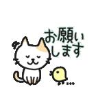 丁寧語なネコちゃま(個別スタンプ:11)