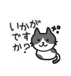 丁寧語なネコちゃま(個別スタンプ:19)