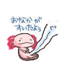 癒しのウーパースタンプ(個別スタンプ:05)