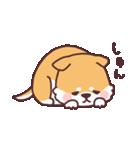 ころころ柴犬(個別スタンプ:02)