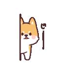 ころころ柴犬(個別スタンプ:05)