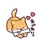 ころころ柴犬(個別スタンプ:13)