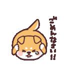 ころころ柴犬(個別スタンプ:14)