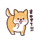 ころころ柴犬(個別スタンプ:15)