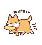 ころころ柴犬(個別スタンプ:18)