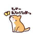 ころころ柴犬(個別スタンプ:22)