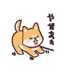 ころころ柴犬(個別スタンプ:23)