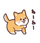 ころころ柴犬(個別スタンプ:24)