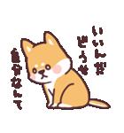 ころころ柴犬(個別スタンプ:25)