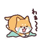 ころころ柴犬(個別スタンプ:36)