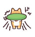 ころころ柴犬(個別スタンプ:38)