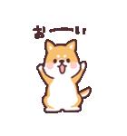 ころころ柴犬(個別スタンプ:39)