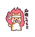ころころ柴犬(個別スタンプ:40)