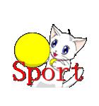 白猫のモモ