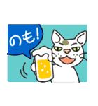 元ノラ猫のホワイトラム、本音を語る