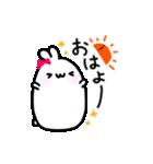 Merry家 ぽっちゃりうさぎとネコと犬(個別スタンプ:01)