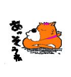 ゆる犬 茶々々の佐賀弁01(個別スタンプ:19)