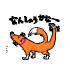 ゆる犬 茶々々の佐賀弁02(個別スタンプ:13)