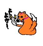 ゆる犬 茶々々の佐賀弁02(個別スタンプ:24)