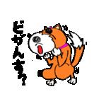 ゆる犬 茶々々の佐賀弁02(個別スタンプ:27)