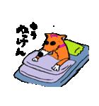 ゆる犬 茶々々の佐賀弁02(個別スタンプ:38)