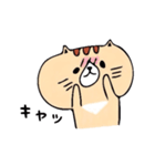 フサフサマユゲのネコさん(個別スタンプ:13)