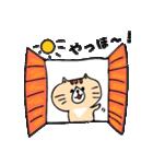 フサフサマユゲのネコさん(個別スタンプ:14)