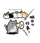 ボンレス猫 Vol.2