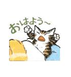TVアニメ「猫のダヤン」(個別スタンプ:9)