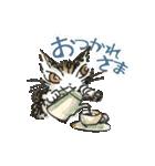 TVアニメ「猫のダヤン」(個別スタンプ:27)